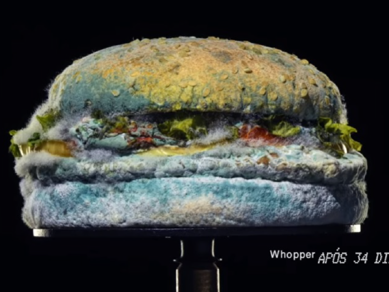 Burger King – Nada Além do Whopper